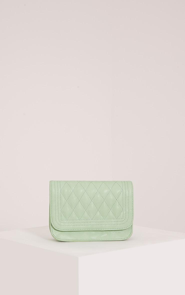 Emma Mint Quilted Chain Strap Shoulder Bag 1