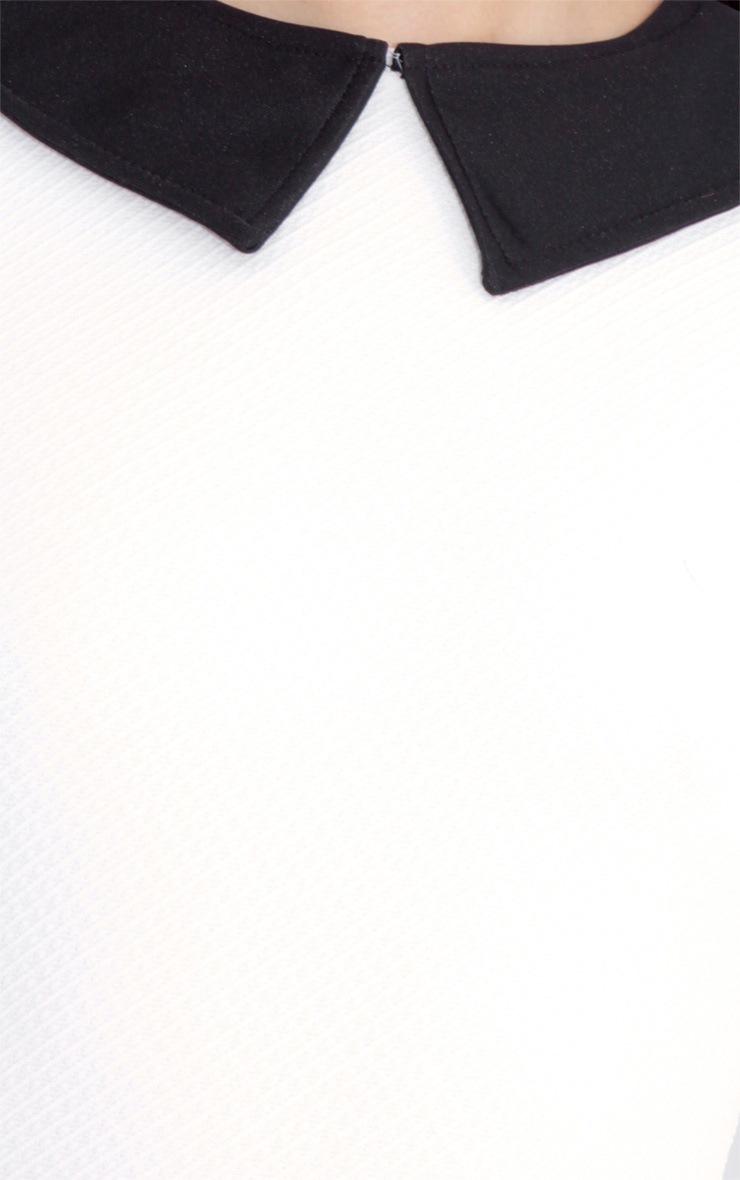 Evie White Collar Dress 5