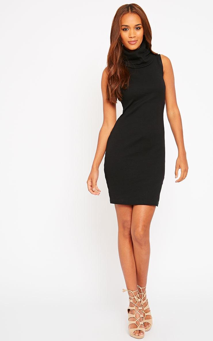 Faybhian Black Turtle Neck Dress 3