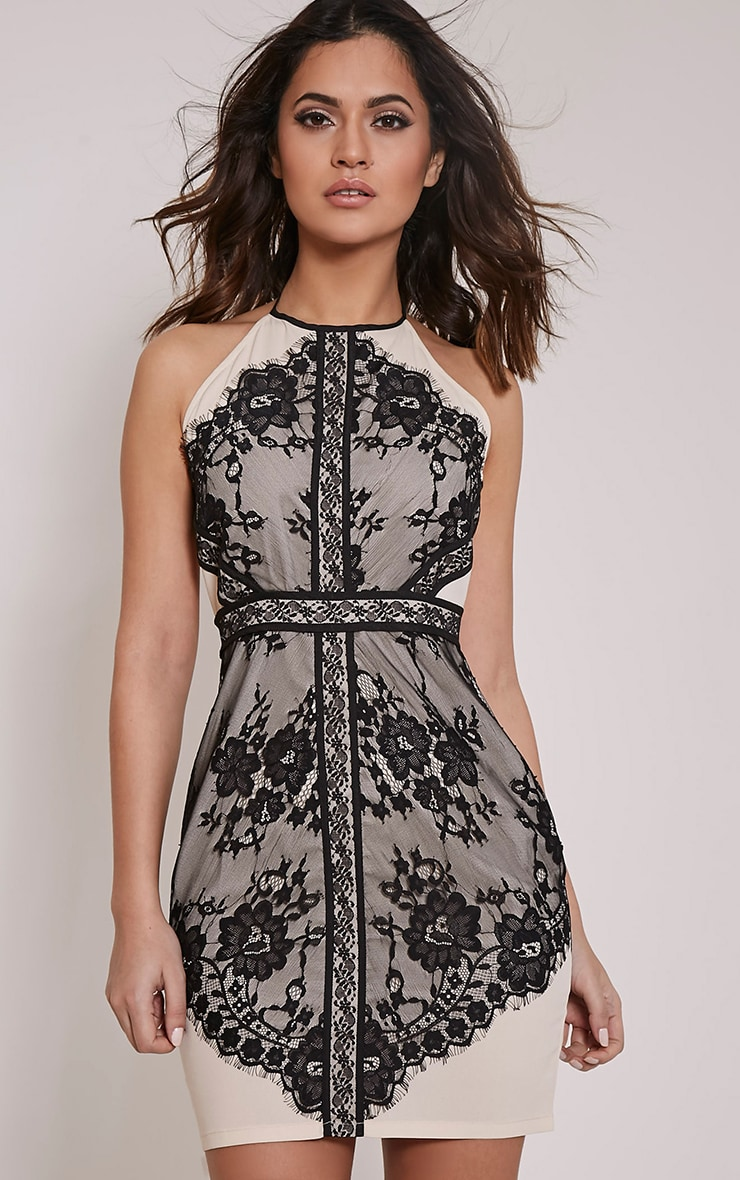 Anita Black Lace Mesh Detail Halterneck Bodycon Dress 1