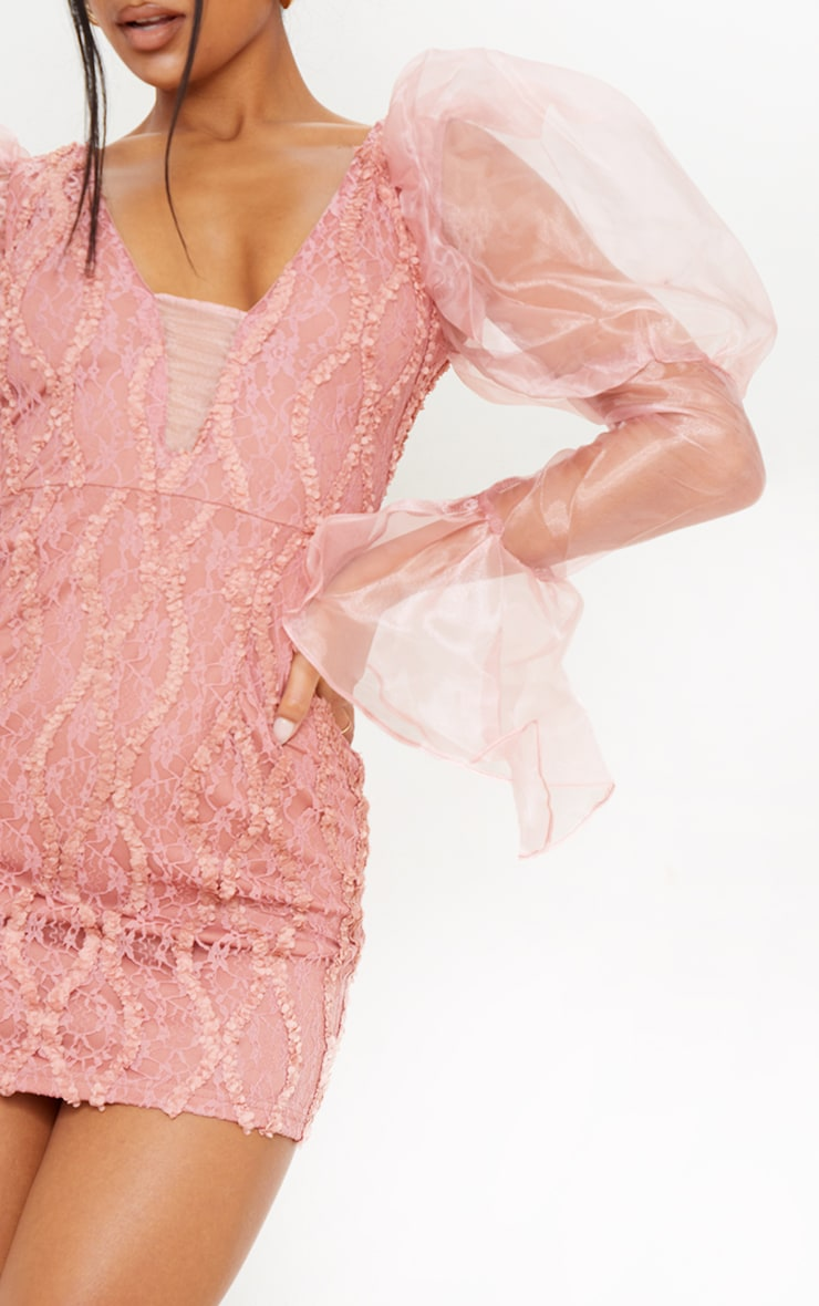 Pink Organza Sleeve Lace Bodycon Dress 4