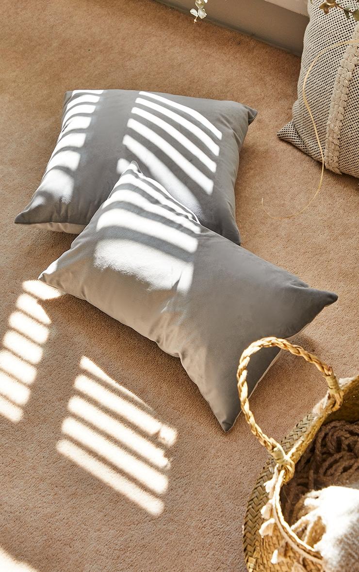 Grey Velvet Filled Cushion 2