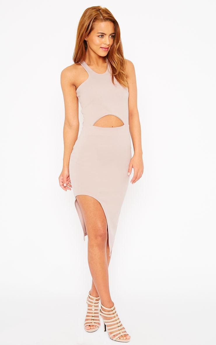 Sydney Mauve Cut Out Curve Split Dress 3