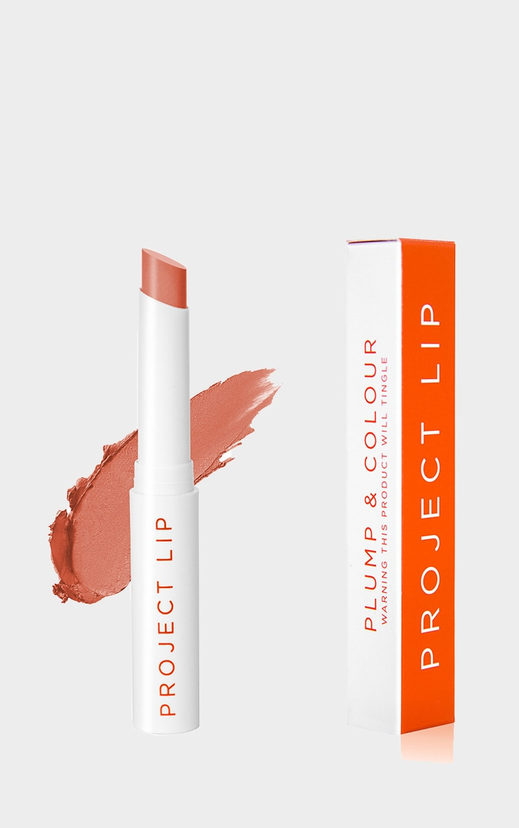Project Lip - Repulpant à lèvres mat - Bare 2