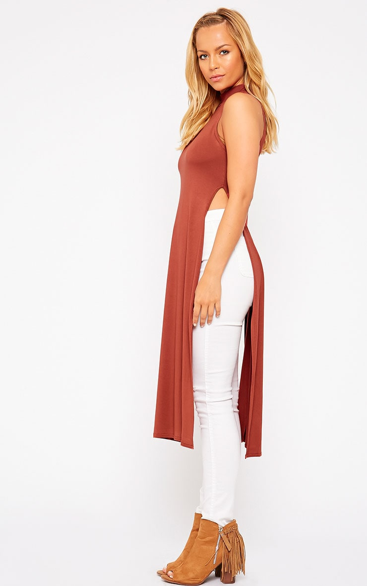Ane Rust High Neck Split Side Top 3