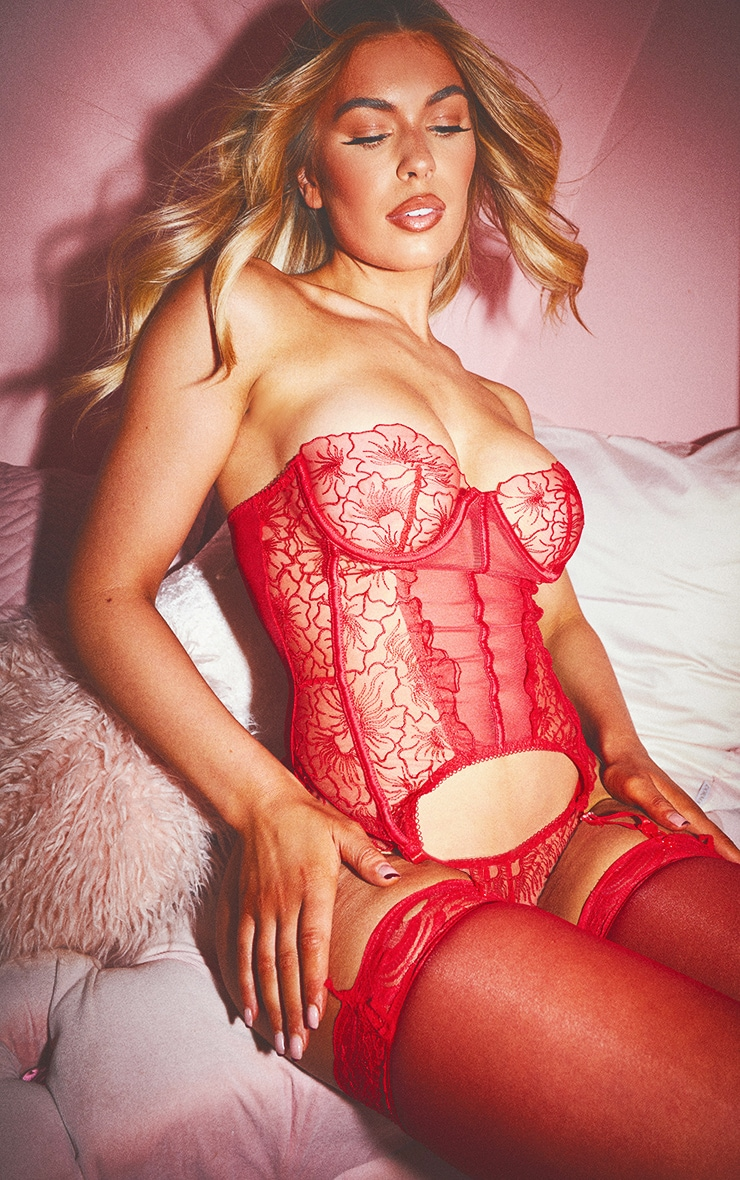 Red Embroidered Mesh Longline Corset And Thong Set 4