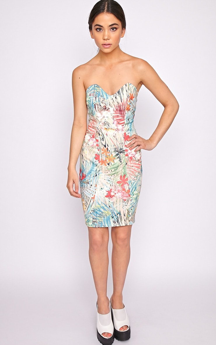 Gianna Multi Print Tropical Dress 3