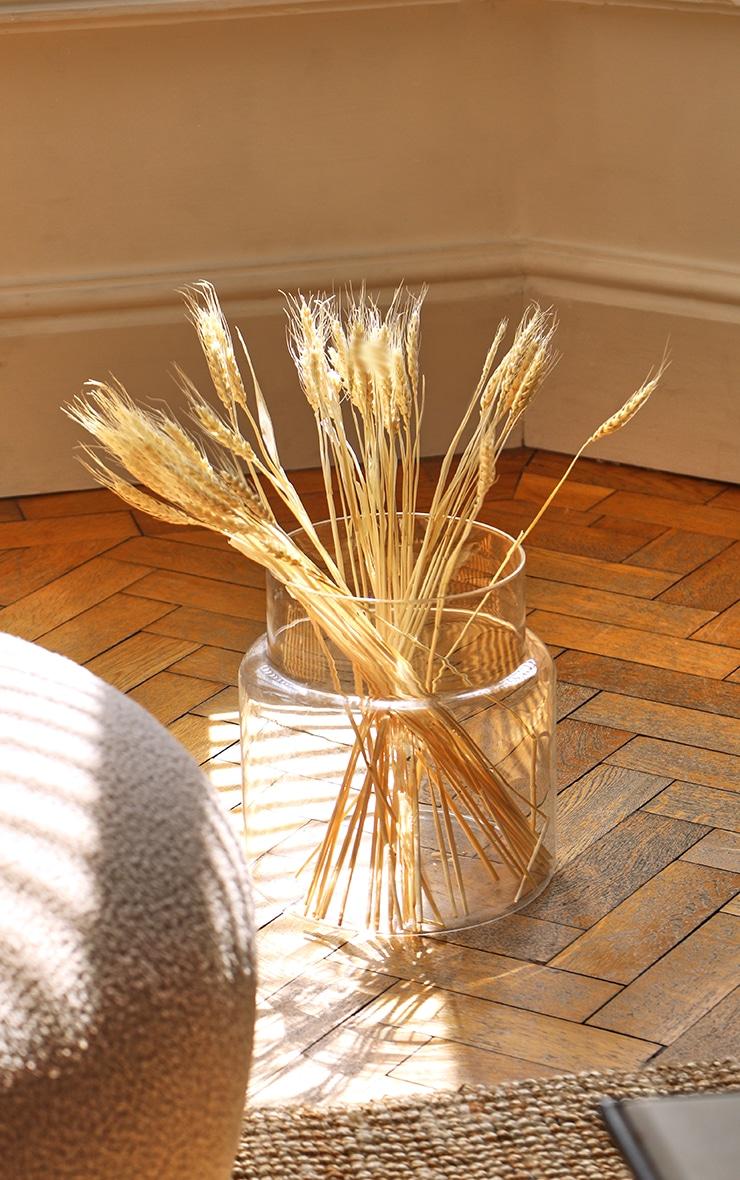 Natural Dried Grass 1
