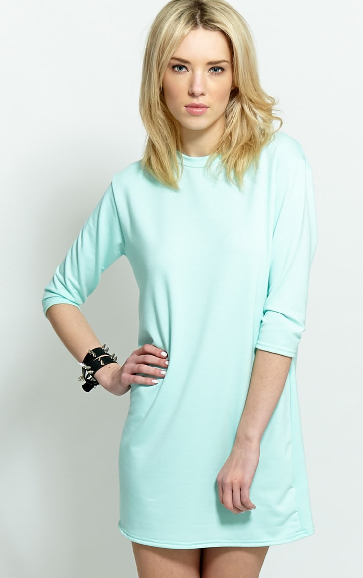 Zoe Mint Jersey Oversized Sweater Dress  1