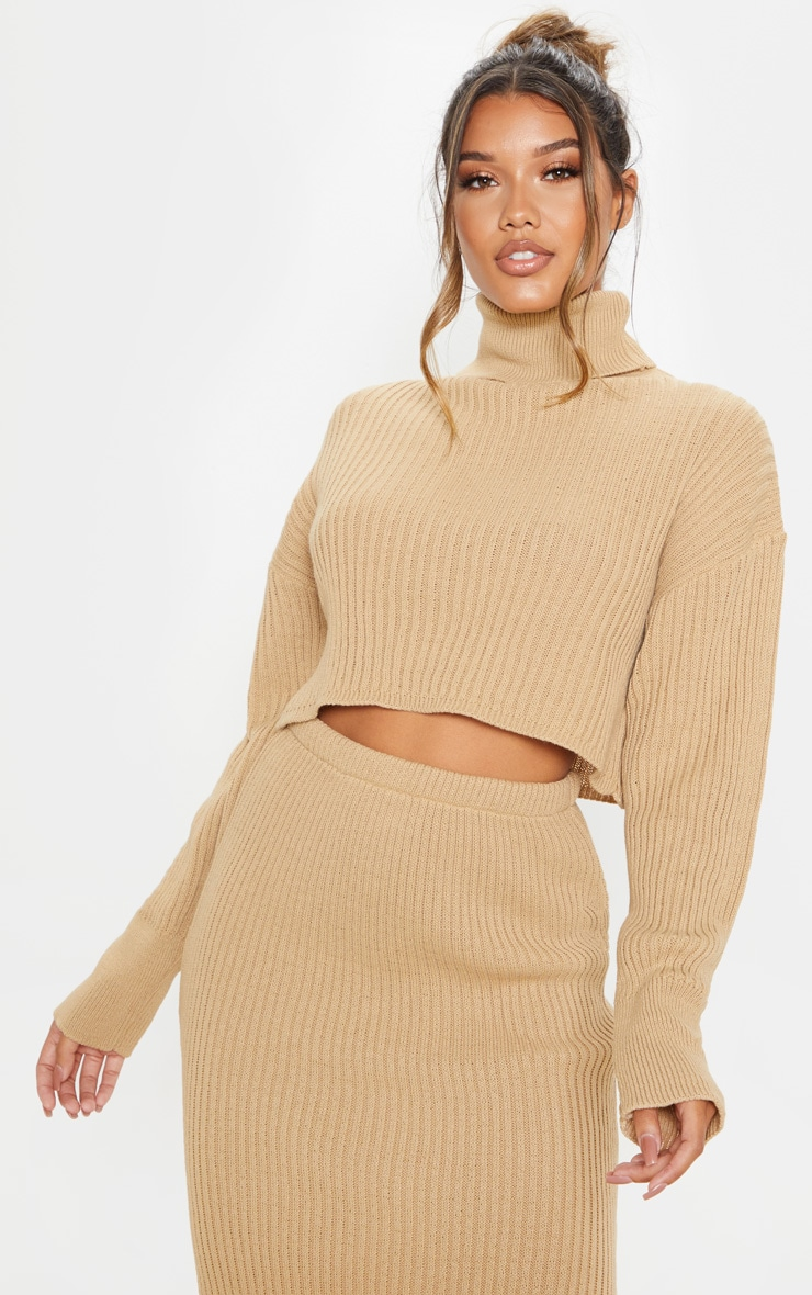Stone Ribbed Knitted High Neck Crop Top 1
