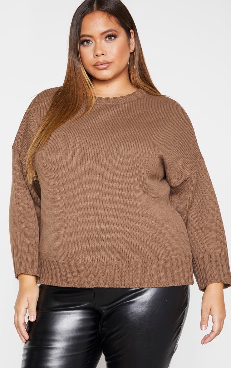 Plus Camel Batwing Sweater 1