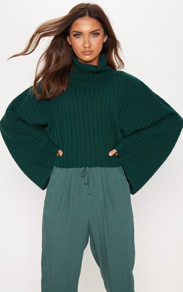 Green Ribbed Knit High Neck Jumper  1