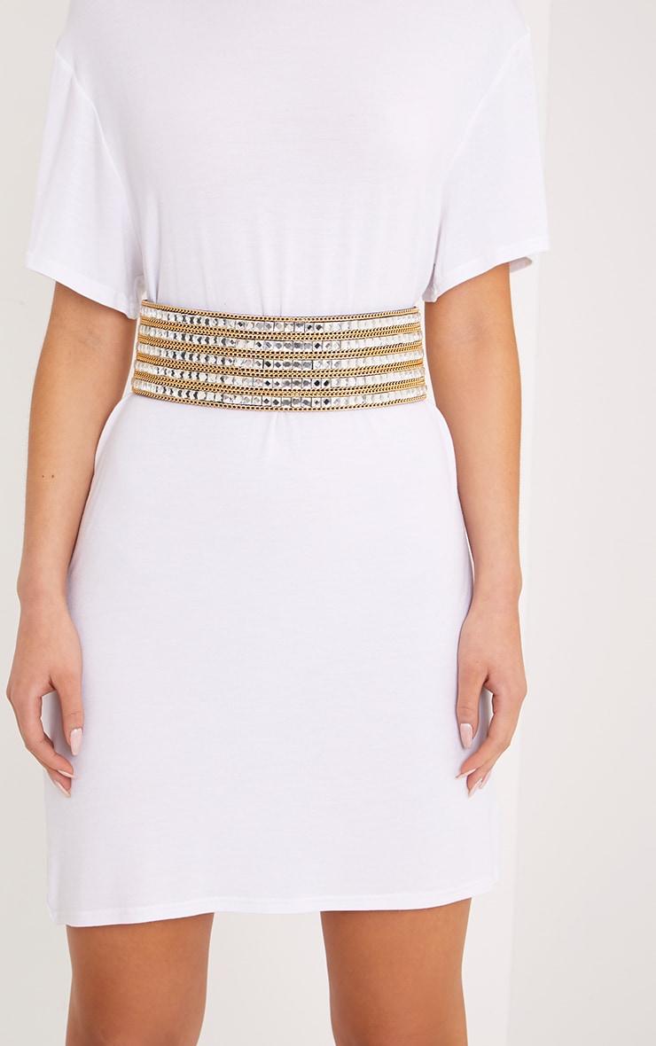 Aurla Silver & Gold Chain Waist Belt 2