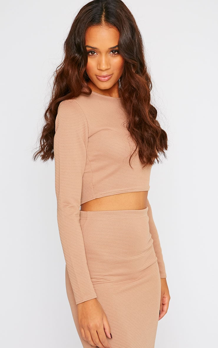 Britney Camel Ribbed Long Sleeve Crop Top 4