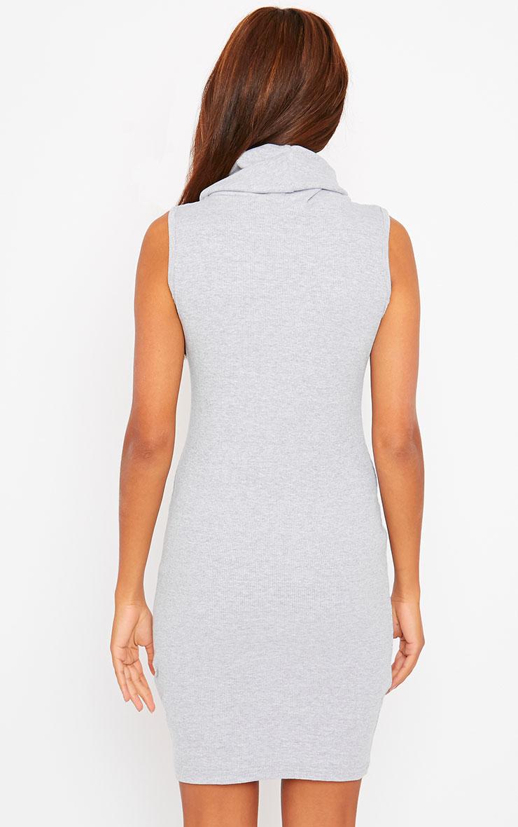 Faybhian Grey Turtle Neck Dress 2