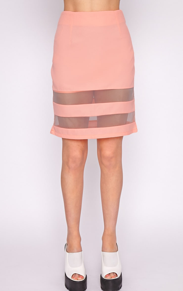Dakota Coral Mesh Insert Skirt  5