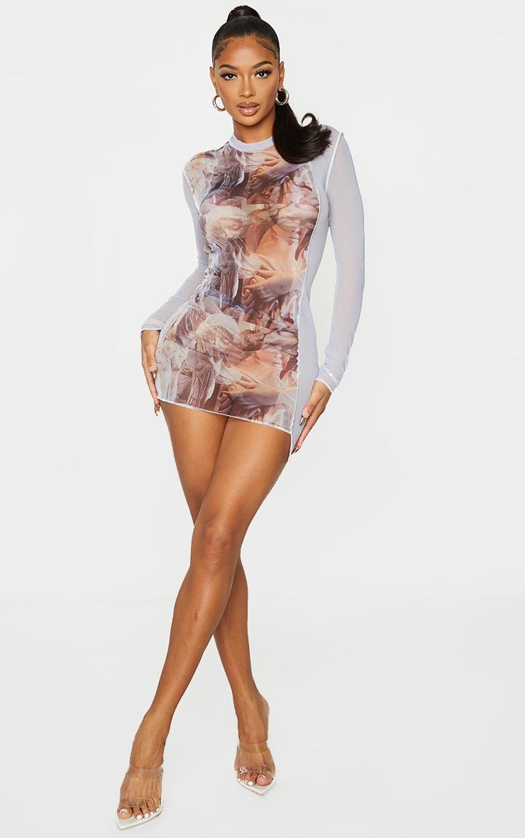Shape Nude Renaissance Print Sheer Mesh Overlock Detail Bodycon Dress 3