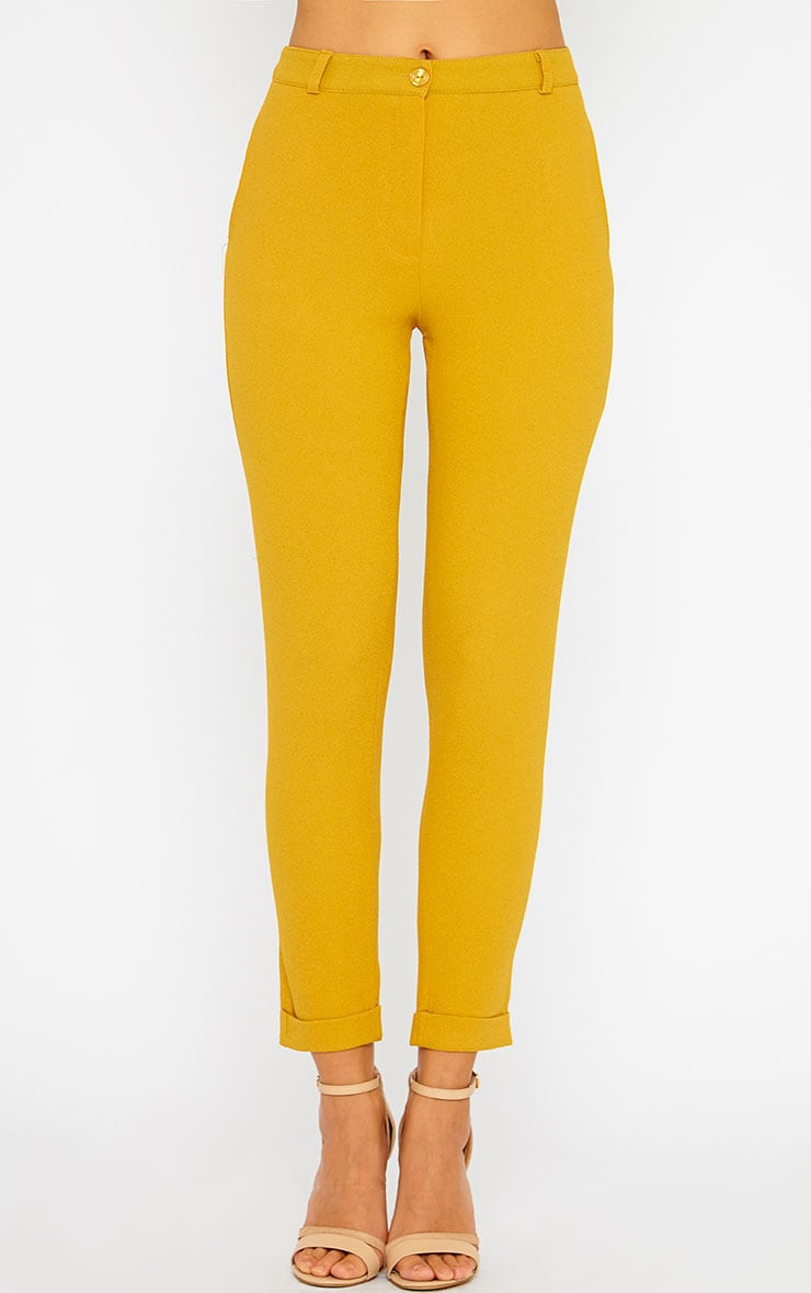 Twiggy Mustard Trousers 4