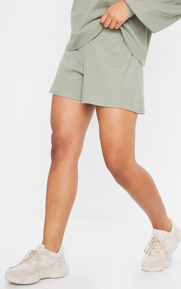 Sage Green Waffle Knit Shorts 2