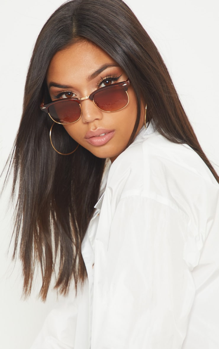 Brown Classic Retro Sunglasses 1