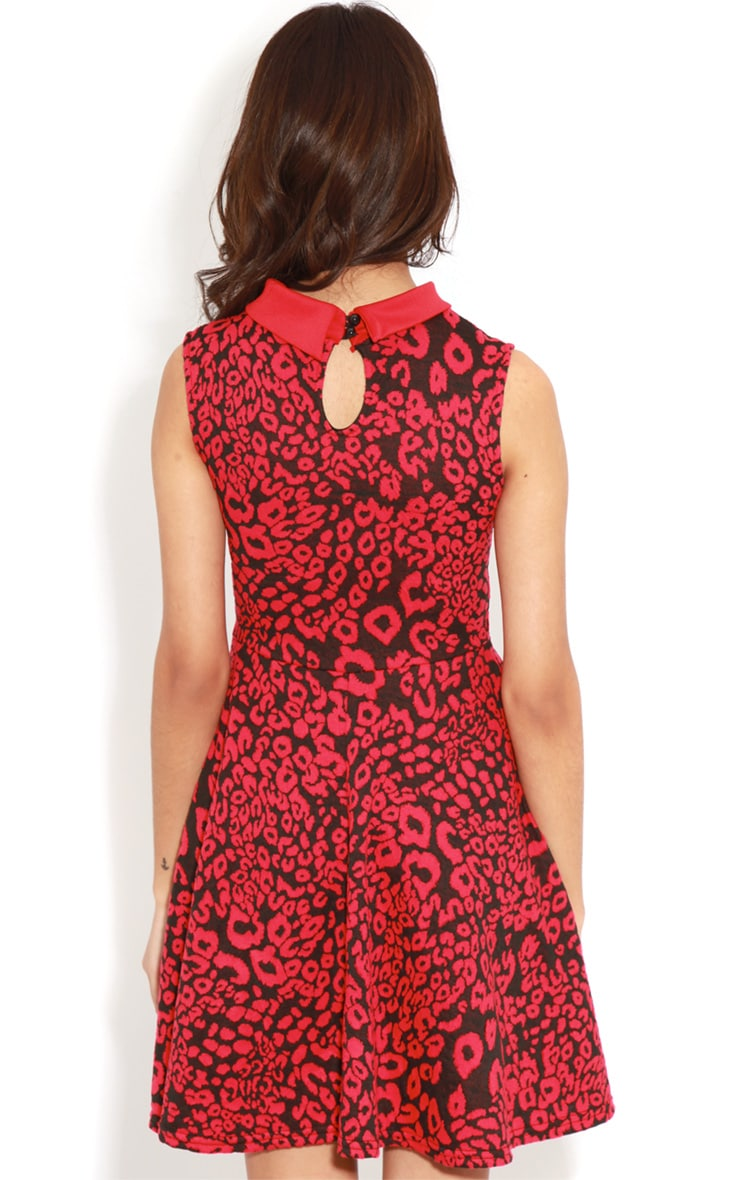 Parma Red & Black Leopard Collar Skater Dress  2