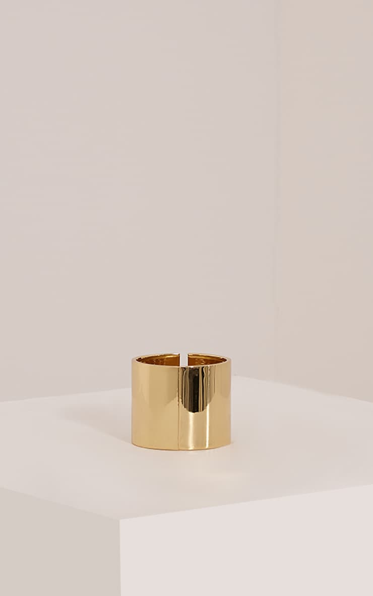 Skiyla Gold Clasp Bangle 2
