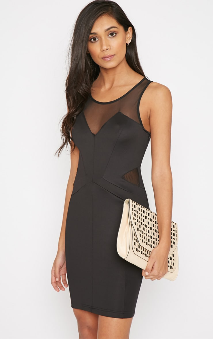 Avril Black Mesh Panel Mini Dress-16 1