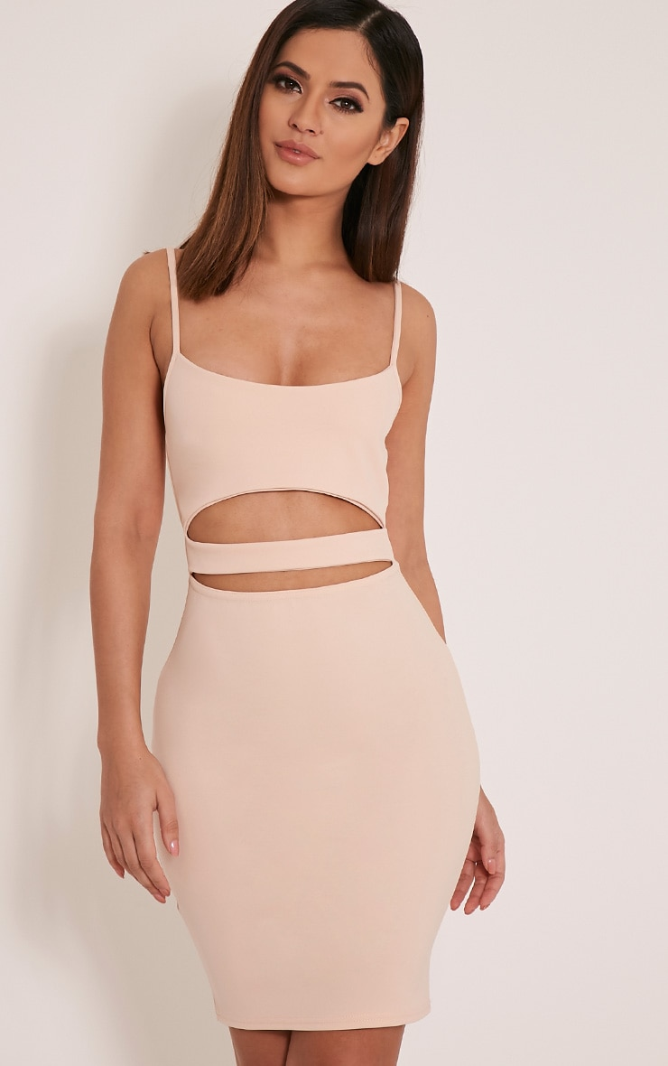 Petite Roxanne Nude Cut Out Mini Dress 1