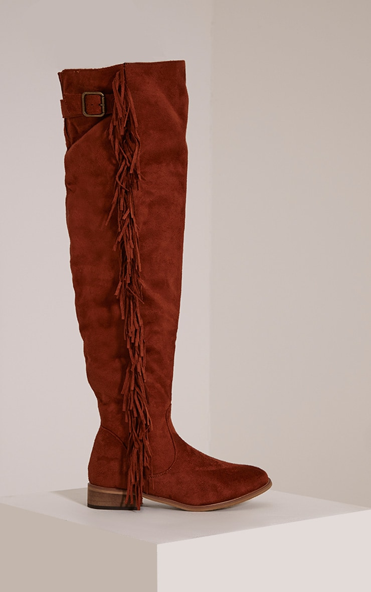 Larie Tan Over The Knee Fringed Boots 3