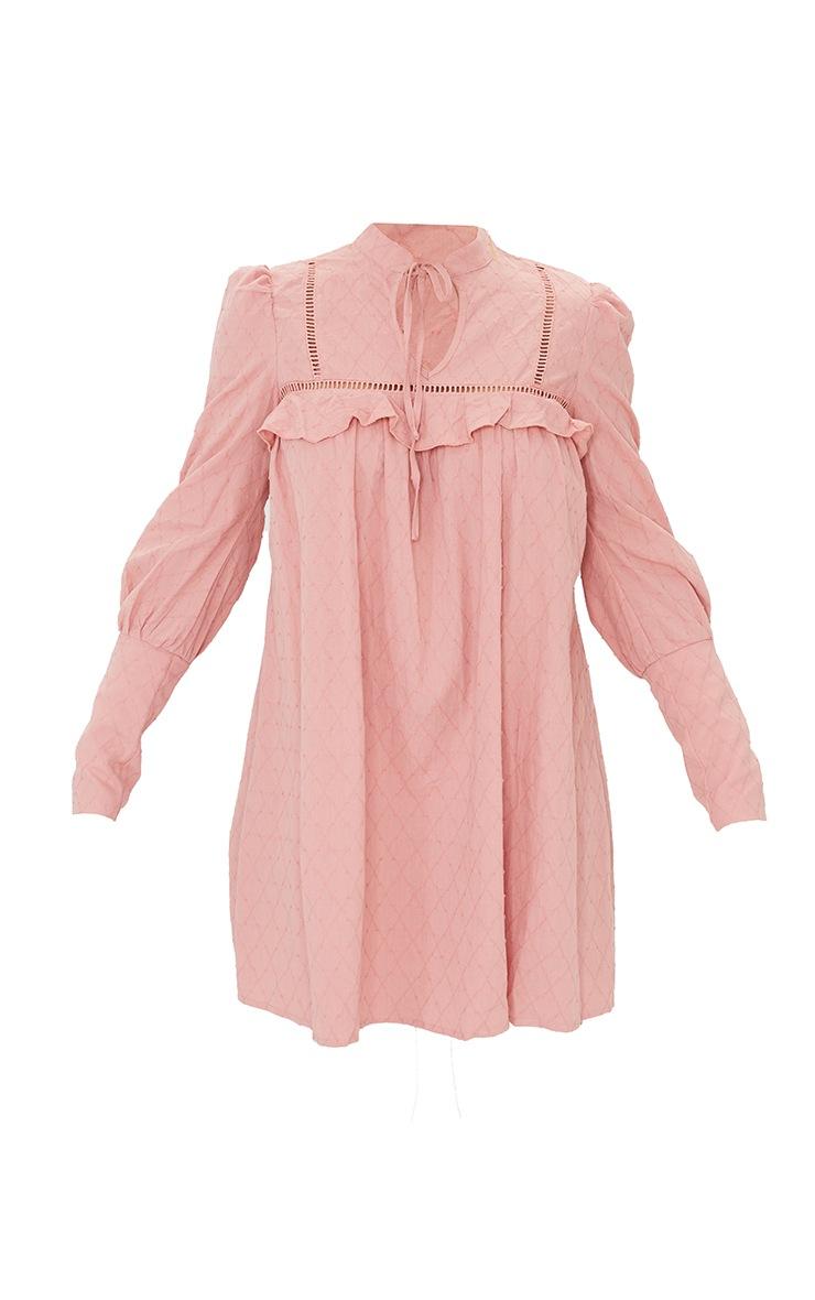 Blush Swiss Dot Tie Neck Detail Shift Dress 5