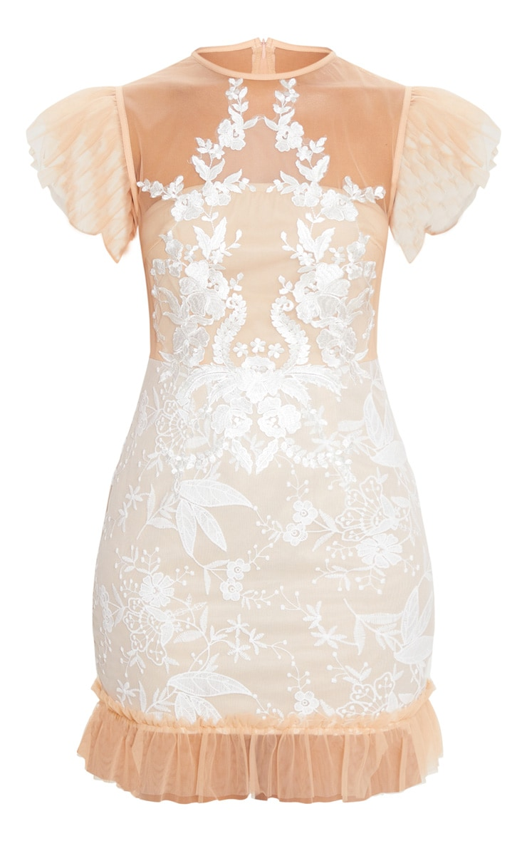 Nude Mesh Embroidered Short Sleeve Frill Detail Bodycon Dress 5