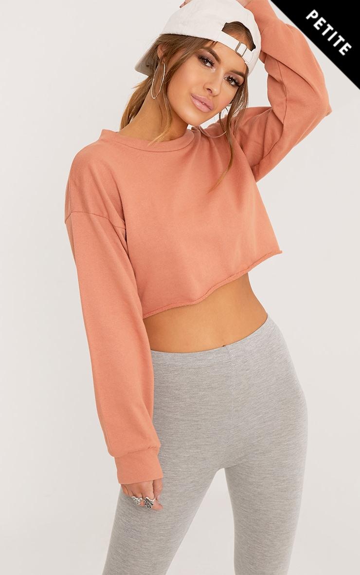 Petite Beau Deep Peach Cropped Sweater  1