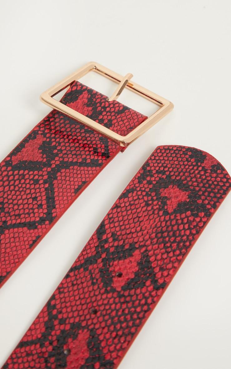 Red Snake Belt 3