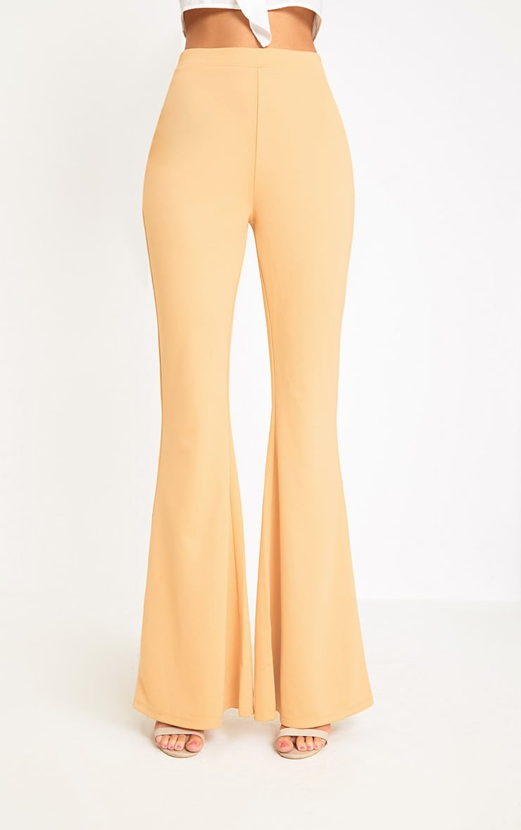 Light Gold Fitted Wide Leg Trousers  2