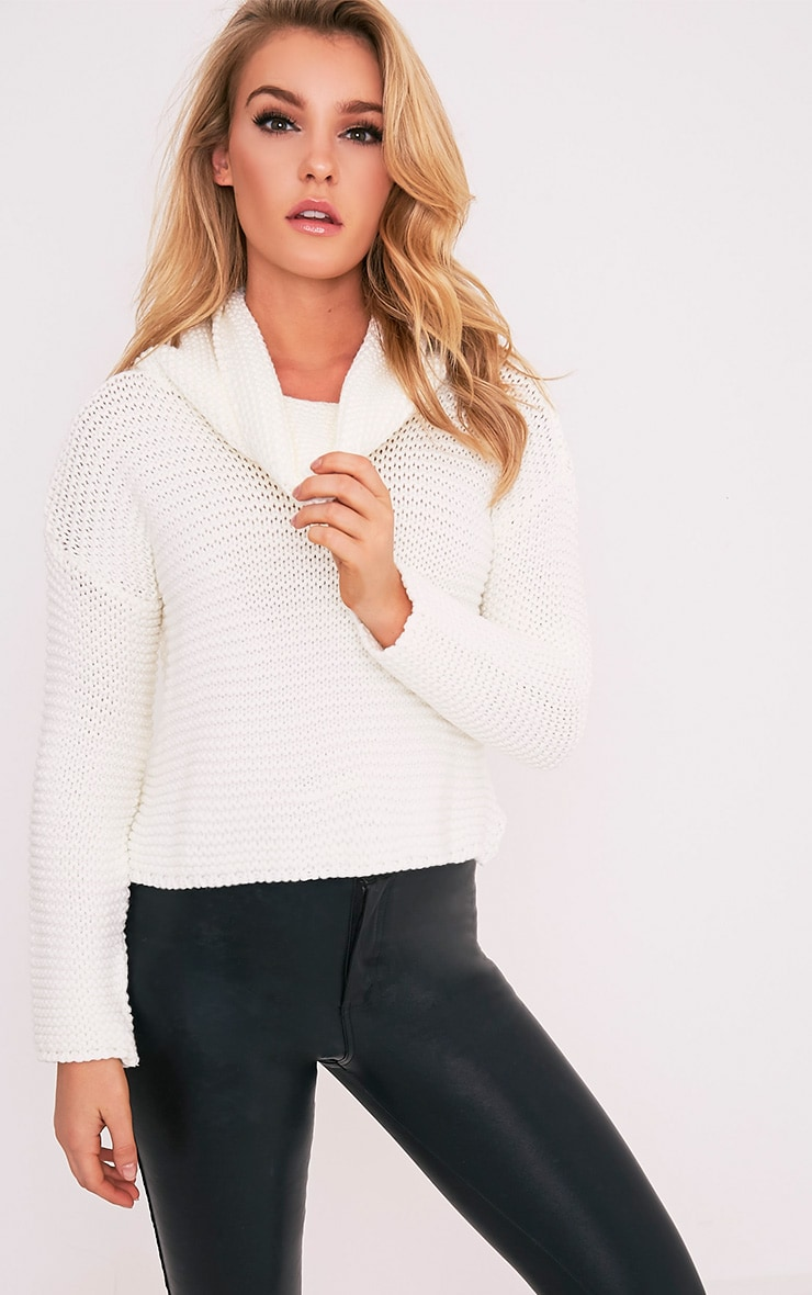 Resi Cream Roll Neck Long Sleeve Crop Jumper 1