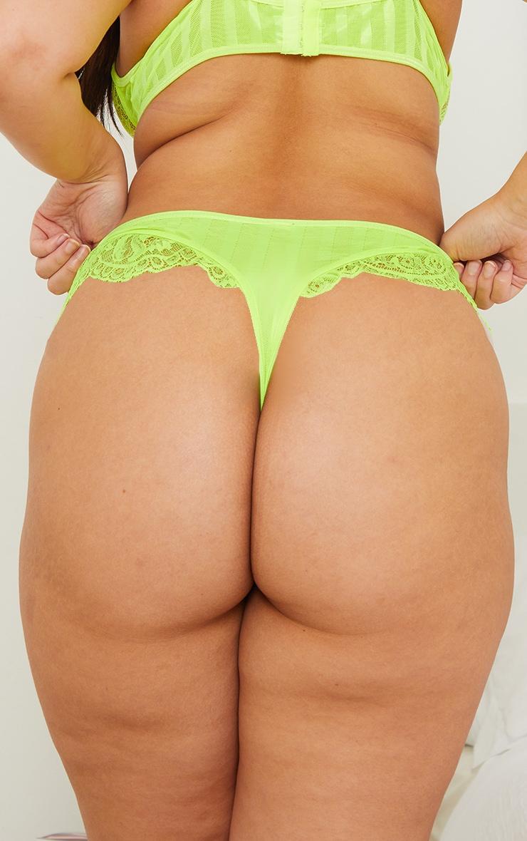 Plus Lime Striped Lace High Leg Thong 2