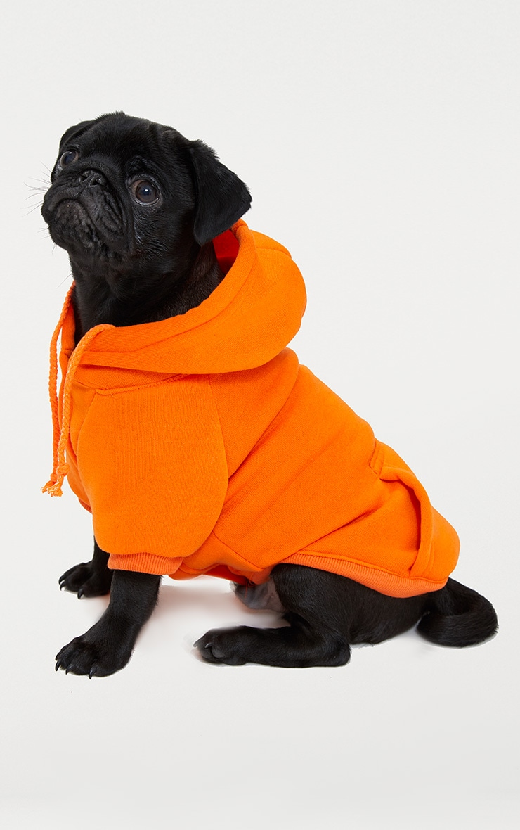 Orange Doggy Hoodie  2