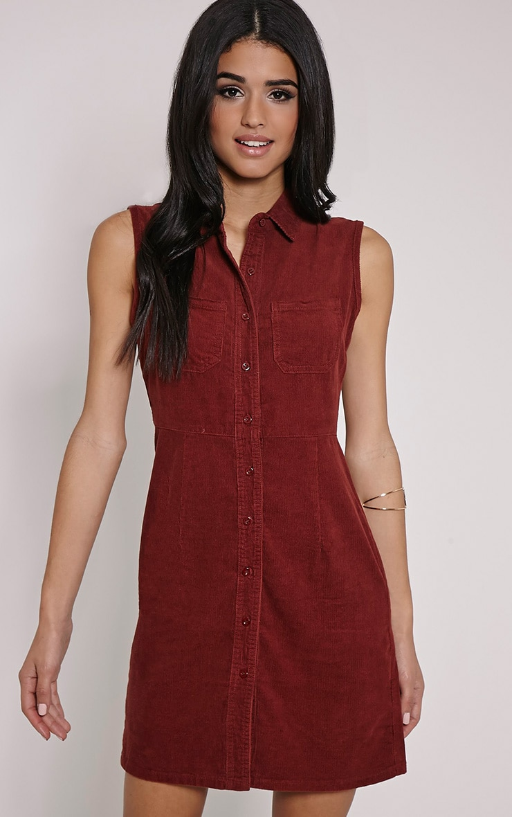 Ritta Rust Button Front Cord Dress 4