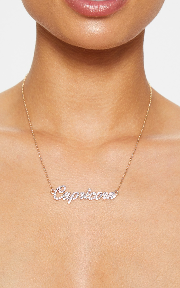 Gold Diamante Capricorn Star Sign Necklace 1
