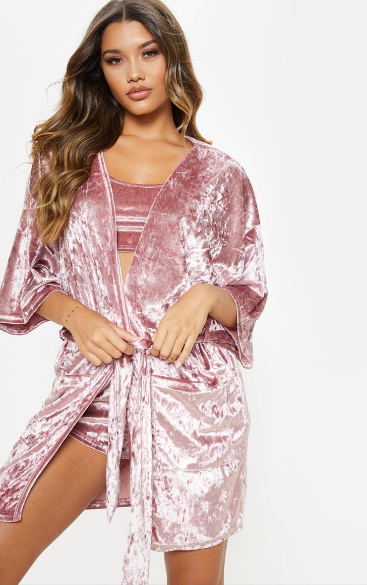 Pink Velvet Robe 5