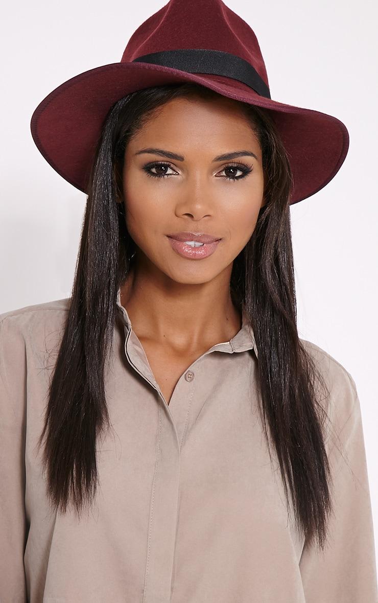 Saria Wine Fedora Brim Hat image 1 0ad04420641d