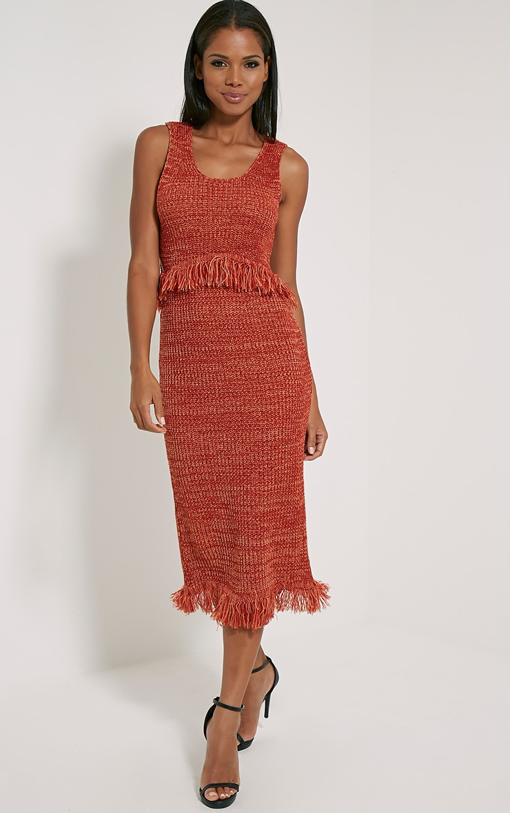 Poesy Rust Knitted Tassel Dress 3