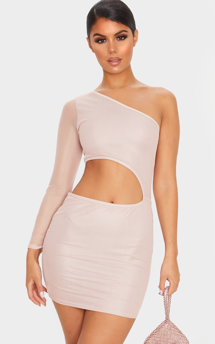 Rose Mesh Cut Out One Shoulder Bodycon Dress 4