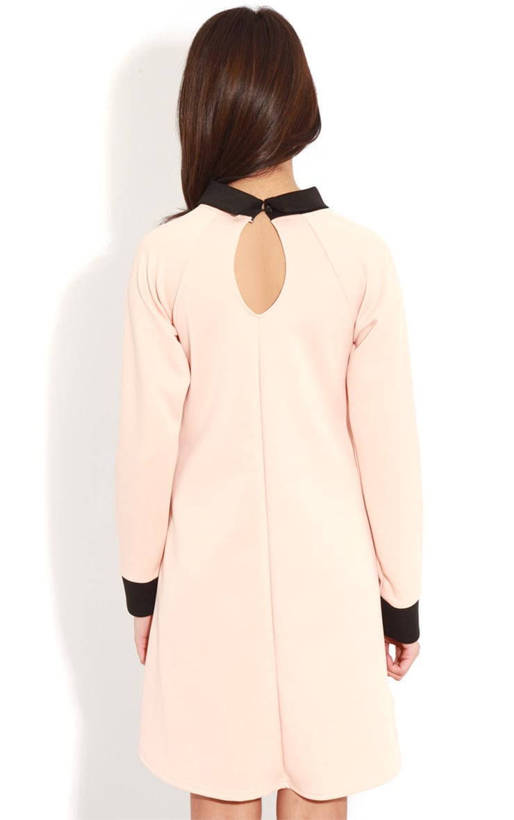 Evelyn Nude Long Sleeved Collar Dress 2