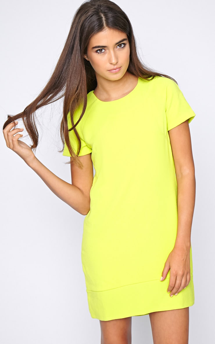 Amelia Lime Shift Dress 4
