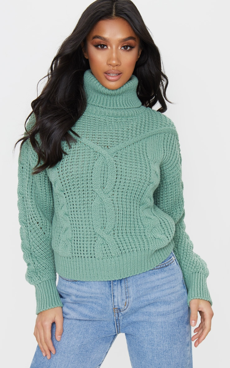Petite Sage Green Roll Neck Knitted Long Sleeve Jumper 1