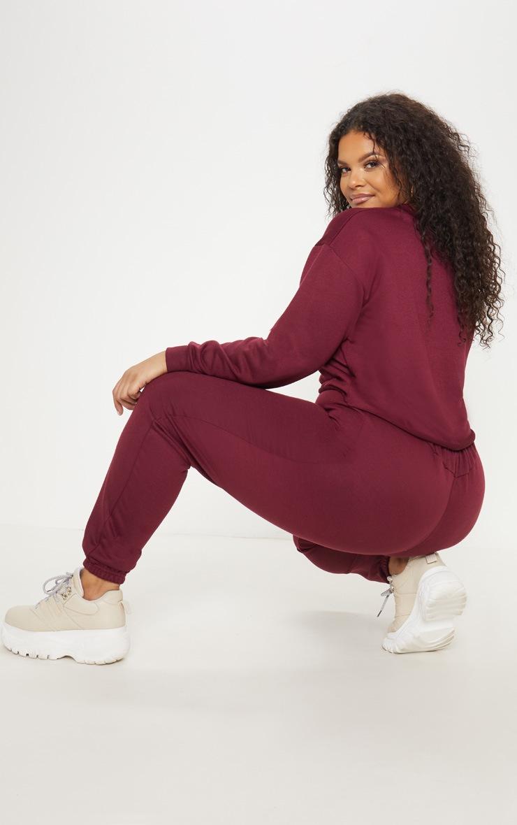 Plus Burgundy Sweater 2