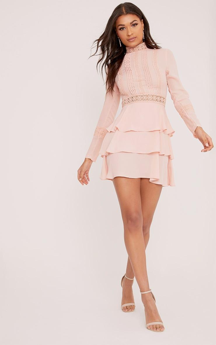 Hope Dusty Pink Crochet Lace High Neck Ruffle Swing Dress 4