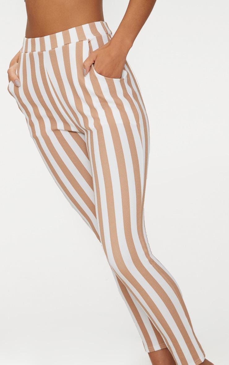 Stone Stripe Skinny Pants 5