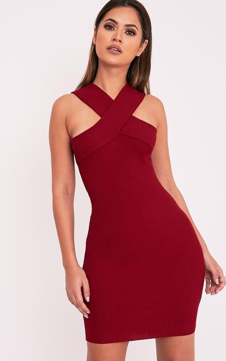 Aramiah Dark Red Ribbed Knit Body Con Mini Dress 1